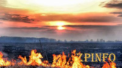Киевский воздух отравлен из-за пожаров в Ирпене и Быковке