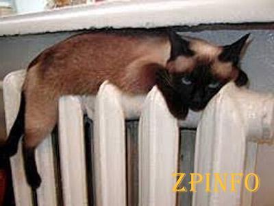 На улице - тепло, а в квартире - жара...