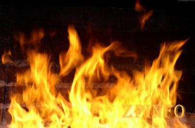 На запорожском курорте сгорела легковушка