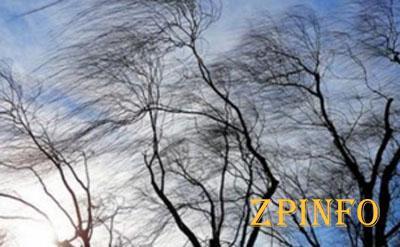 На Запорожскую область обрушится сильный ветер