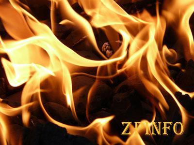 Ночью в Запорожье горела дача