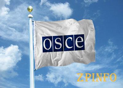ОБСЕ договорится с боевиками о прекращении огня в некоторых пунктах
