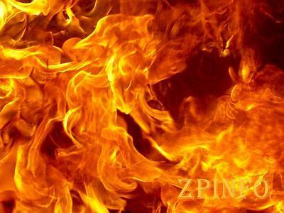 Огонь за сутки повредил 26 га Запорожских экосистем