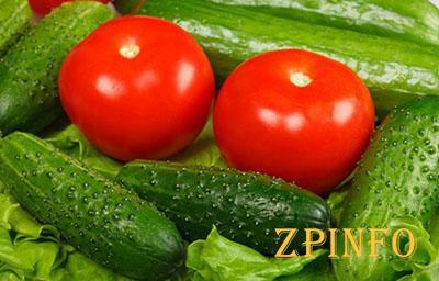 Первый урожая овощей ждем уже в апреле