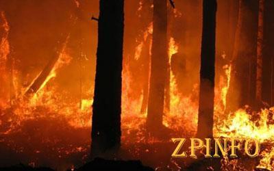 Под Запорожьем сутки бушуют пожары