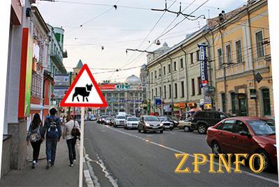 Ревизия дорожных знаков в Запорожье состоится