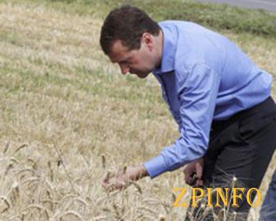 Сельскому хозяйству не хватает квалифицированных кадров