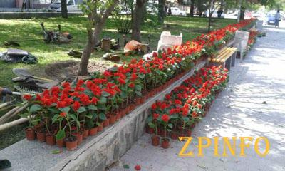 Старая часть Запорожья преобразится к майским праздникам
