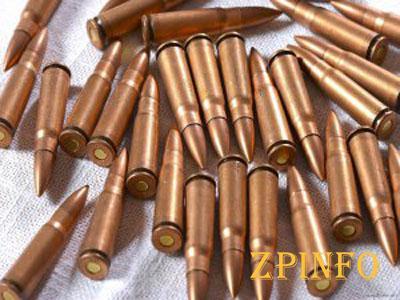 У запорожца нашли больше сотни патронов