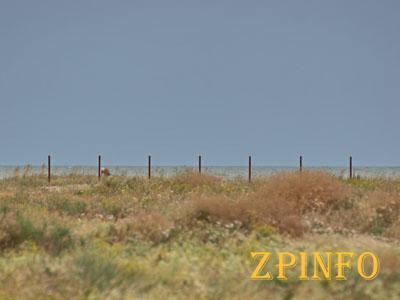 В Кирилловке у частников отобрали землю, где они хотели построить базу отдыха