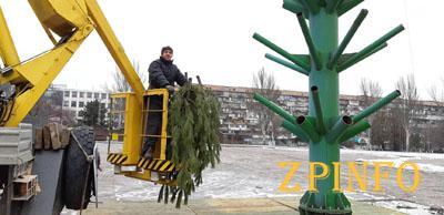 В центре Запорожья появляется 24-метровая ёлка