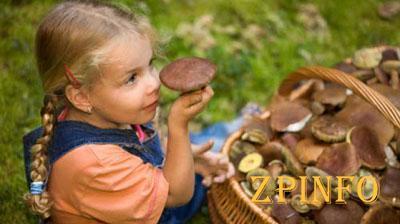 В Запорожье 4-летняя девочка отравилась грибами