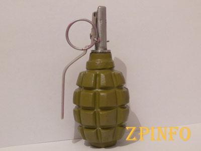В Запорожье четвероклассник принес в школу муляж гранаты