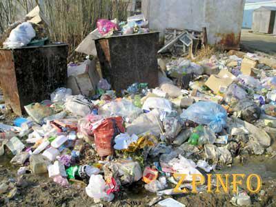 В Запорожье хотят выделить 20 млн. на уборку мусора