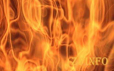 В Запорожье из-за пожара сгорело заброшенное здание