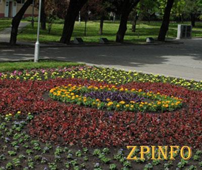 В Запорожье ко Дню Победы высадят 34 тысячи цветов