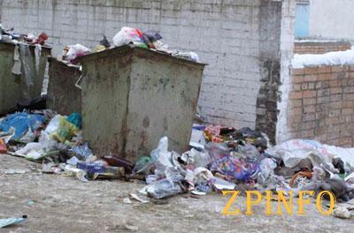 В Запорожье на борьбу со стихийными свалками потратят 600 тыс. грн.