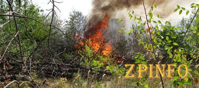 В Запорожье на Хортице снова возник пожар
