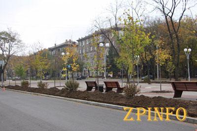 В Запорожье озеленяют проспект Маяковского
