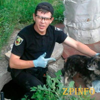 В Запорожье патрульные спасали бродячую собаку