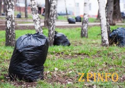 В Запорожье предлагают провести генеральную уборку