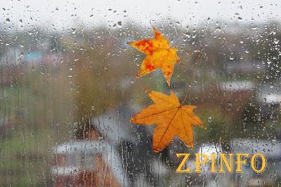 В Запорожье пришла настоящая осень с дождями и холодом