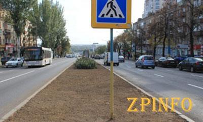 В Запорожье продолжается обустройство газонов