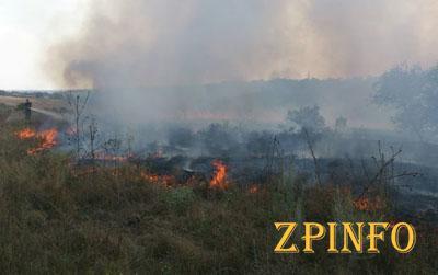 В Запорожье продолжают бороться с пожарами