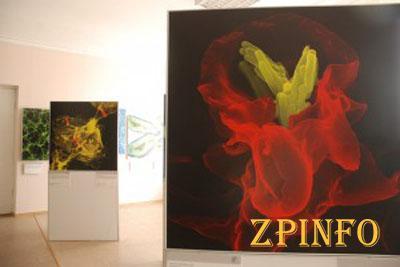 В Запорожье проходит выставка нано-картин