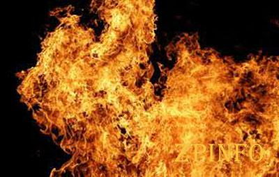 В Запорожье произошел пожар в дачном кооперативе