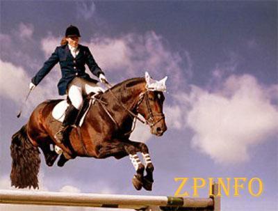 В Запорожье пройдет чемпионат по конному спорту