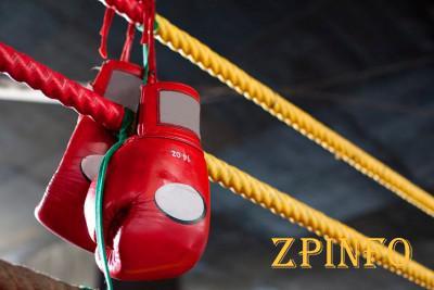 В Запорожье пройдут состязания по боксу