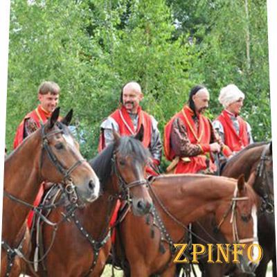В Запорожье разжаловали 5 генералов и 2 полковника
