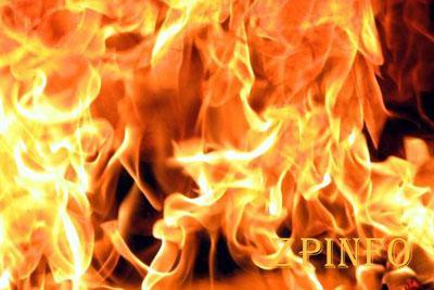 В Запорожье сгорел гараж с машиной