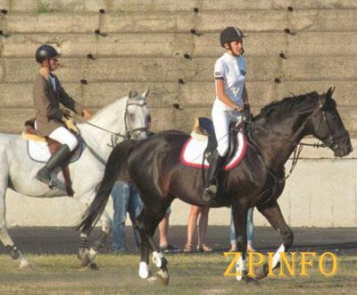 В Запорожье состоялась первая конная выставка