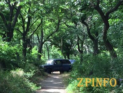 В Запорожье водитель оставил машину на тропинке в Дубовке
