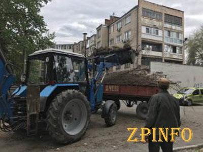 В Запорожье вывозят ветки и начинают ремонт внутрикварталок