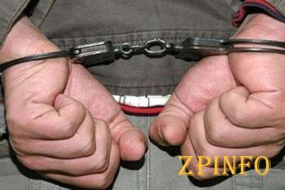 В Запорожье задержали дачных грабителей