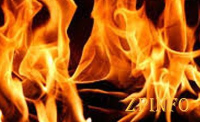 В Запорожье загорелся дом