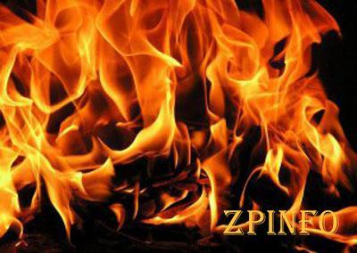 В Запорожье загорелся гараж с автомобилем
