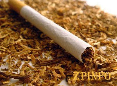 В запорожском аэропорту задержали турка с табаком