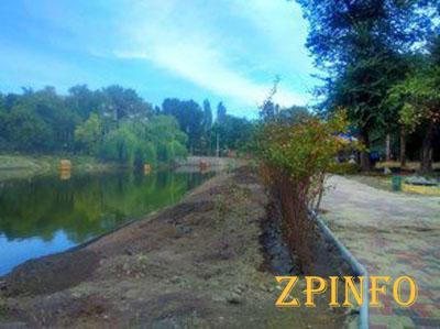 В Запорожском парке появилась живая изгородь у пруда
