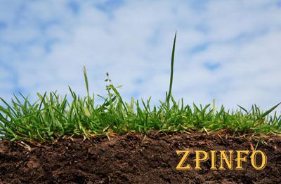 В Запорожской области более 200 участников АТО получат земли