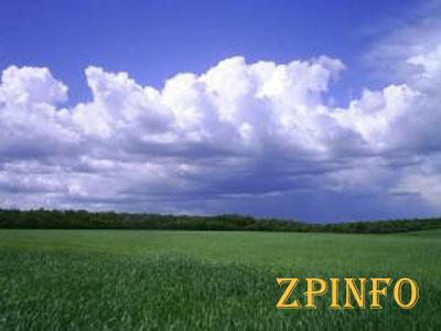 В Запорожской области более 500 бойцов АТО получат землю
