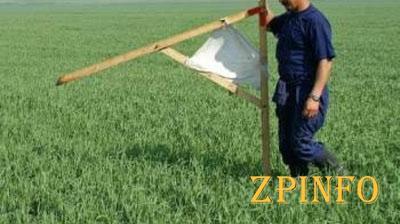 В Запорожской области более тысячи АТОшников получили землю