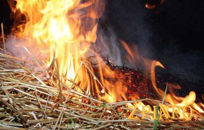 В Запорожской области горел сарай с сеном