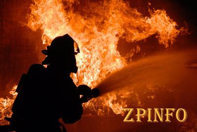 В Запорожской области ночью горел частный дом