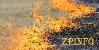 В Запорожской области объявлен высший класс пожарной опасности