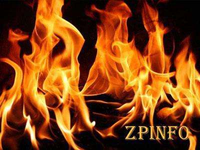 В Запорожской области огонь уничтожил Ford Transit