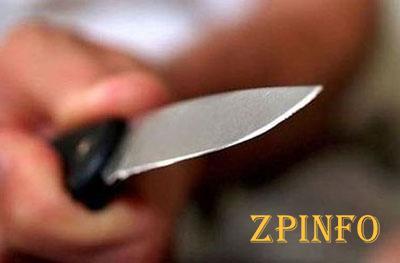В Запорожской области осудили мужчину, зарезавшего сестру